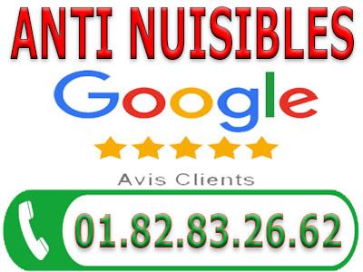 Traitement Punaises de lit Goussainville 95190